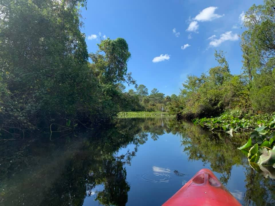 Kayaking in Tampa on the Little Manatee River