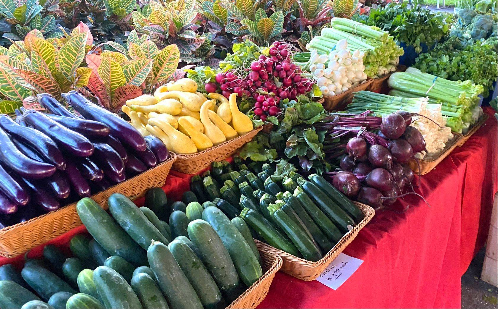 A Guide to Tampa Area Farmers Markets