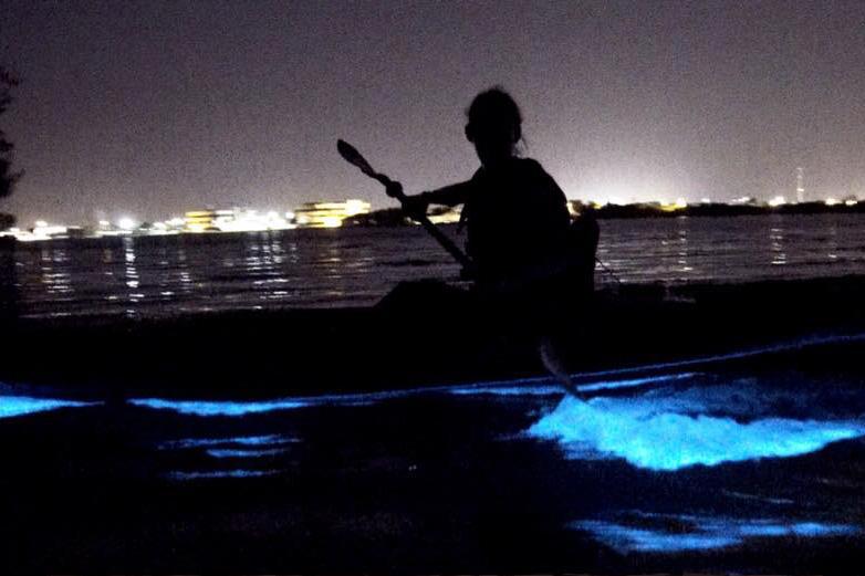 Summer date ideas - Bioluminescent Kayaking